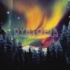 Cover of the album Dystopia