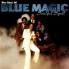 Couverture de l'album Soulful Spell: The Best of Blue Magic