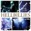 Couverture de l'album LEVANDE LIVe
