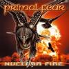Couverture de l'album Nuclear Fire
