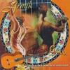 Couverture de l'album Fuego Gitana: Nuevo Flamenco Collection