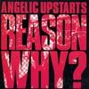 Couverture de l'album Reason Why?