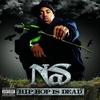 Couverture de l'album Hip Hop Is Dead