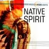 Couverture de l'album Music & Highlights: Native Spirit