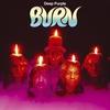 Couverture de l'album Burn
