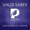 Couverture de l'album These Roads Go Forever - Single