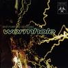 Couverture de l'album Wormhole