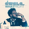 Cover of the album What Profit - Single