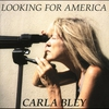 Cover of the album Looking for America