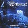 Couverture de l'album Wintersturm
