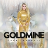 Couverture de l'album Goldmine