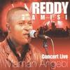 Cover of the album Maman angebi (Live)