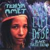 Cover of the album Black Turtle Island