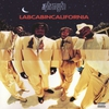 Cover of the album Labcabincalifornia