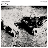 Cover of the track EONS