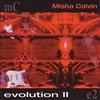 Couverture de l'album Evolution II
