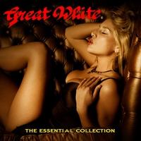 Couverture du titre The Essential Collection