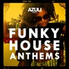 Cover of the album Azuli Presents Funky House Anthems