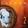 Couverture de l'album Shaman 2