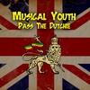 Couverture de l'album Pass the Dutchie - Single
