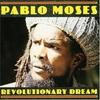 Couverture de l'album Revolutionary Dream