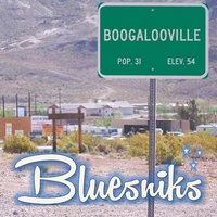Cover of the track Boogalooville
