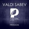 Couverture de l'album Freedom - Single