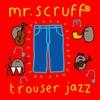 Couverture de l'album Trouser Jazz