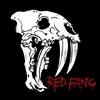 Couverture de l'album Red Fang