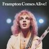 Couverture de l'album Frampton Comes Alive! (Live)