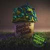 Couverture de l'album Sorbet for the Soul