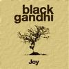Couverture de l'album Joy