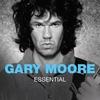 Couverture de l'album Essential