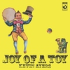 Cover of the album Joy of a Toy
