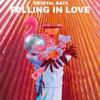 Couverture de l'album Falling In Love - Single