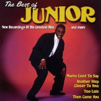 Cover of the track The Best of Junior: Mama Used to Say