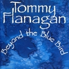 Couverture de l'album Beyond The Bluebird