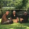 Couverture de l'album Folk Music