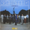 Couverture de l'album America