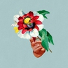 Couverture de l'album Kingdoms in Colour
