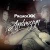 Couverture de l'album Androgyn - Single