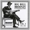Couverture de l'album Big Bill Broonzy Vol. 5 1935 - 1936