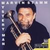 Couverture de l'album Mystery Man
