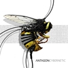 Couverture de l'album Cybernetic