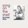 Couverture de l'album Song On the Shelf