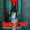 Couverture de l'album Best Of Minimal House