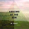 Couverture de l'album Arrows at the Sun