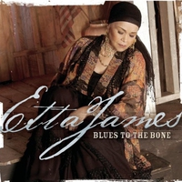 Cover of the track Blues to the Bone
