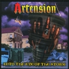 Cover of the album Into the Storm