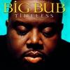 Couverture de l'album Timeless